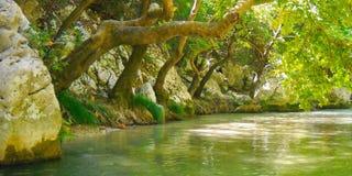 Grön färg för smaragd av Acheronfloden Arkivbilder