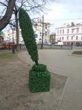 Grön färgpulverflaska i stadsgatan royaltyfria foton