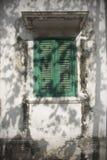 grön fönster- och trädskugga Arkivbild