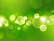 Grön förnimmelse Royaltyfria Foton