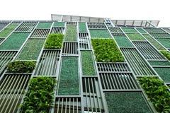 Grön facade royaltyfri bild