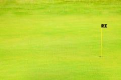 Grön farled av golfbanan med stiftet och koppen arkivfoto