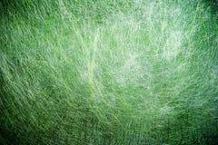 Grön fibertextur Royaltyfri Fotografi