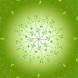 grön fjäder Royaltyfri Fotografi