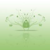 grön fjäder Arkivbilder