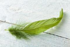 Grön fjäder på lantligt trä Arkivfoto