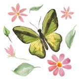 Grön fjäril och blommor Arkivbilder