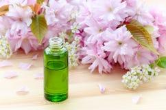 Grön flaska med nödvändiga oljor, den naturliga skönhetsmedlet och den körsbärsröda blomningen på det trä Royaltyfria Bilder