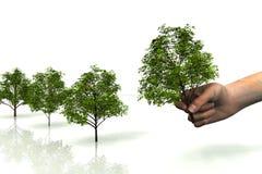 grön fred Fotografering för Bildbyråer