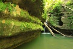 grön frodig vattenfall Arkivfoton