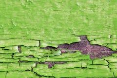 grön gammal målarfärg Arkivfoto
