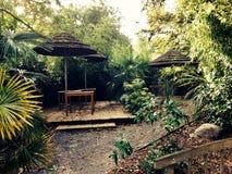 Grön gammal trädgård Arkivfoto
