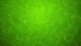 Grön giftig vattentextur Royaltyfria Bilder