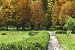 Grön gränd för sommar in mot höst arkivfoton