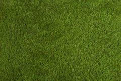 Grön gräsbakgrund Royaltyfri Fotografi