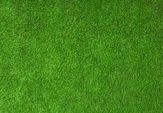 Grön gräsbakgrund Arkivfoton