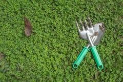 Grön gräsbakgrund Fotografering för Bildbyråer