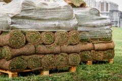 Grön gräsmatta i en rulle på paletter fotografering för bildbyråer