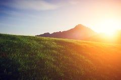 Grön gräsmatta med ett berg på solnedgången Royaltyfri Foto