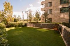 Grön gräsmattaframdelbakgård nära som returnerar solig dag för bänksommar Royaltyfri Foto