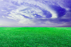 Grön gräsmattahimmelbakgrund royaltyfria bilder