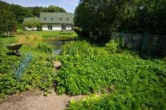 Grön grönsakträdgård av ett privat hus arkivbild