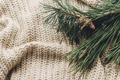 Grön gran förgrena sig på den varma hemtrevliga tröjan på lantlig bakgrund, sp Royaltyfria Foton