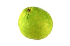 Grön grapefrukt Royaltyfri Foto