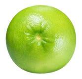 Grön grapefrukt, raring, vit grapefrukt som isoleras på vita lodisar Fotografering för Bildbyråer