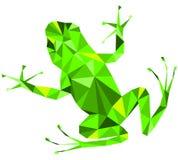 Grön groda royaltyfria foton
