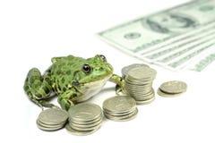 Grön groda med mynt och sedlar Arkivbild