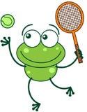 Grön groda som spelar tennis Fotografering för Bildbyråer