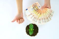 Grön grodd i jordningen och europépengarna Royaltyfri Fotografi