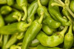 Grön grupp för varm peppar royaltyfri foto
