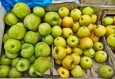 Grön gul äpplemarknad Arkivbilder