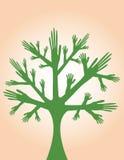 grön handtree Fotografering för Bildbyråer