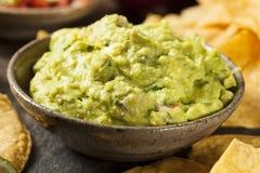 Grön hemlagad Guacamole med tortillachiper Fotografering för Bildbyråer