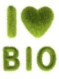 grön hjärta för gräs Arkivfoto