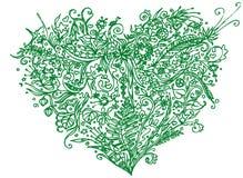 Grön hjärta i zentanglestil bakgrund isolerad white Växt- modell för den vuxna linjen konst för spänning för färgläggningbok anti Royaltyfri Fotografi