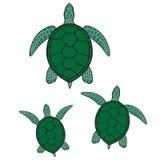 grön illustrationhavssköldpadda stock illustrationer