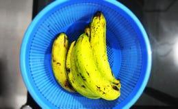 Grön indisk banan fotografering för bildbyråer