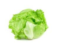 Grön isberggrönsallat på vit bakgrund, ny kålisolat Arkivfoto