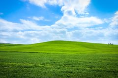 Grön italiensk kulle royaltyfria foton