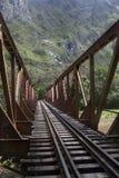 Grön järnväg bro Fotografering för Bildbyråer