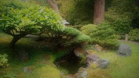 Grön japanträdgård med träd över ett damm Arkivfoto