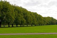 grön jesus park Royaltyfri Foto