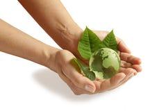 Grön jord Arkivbild