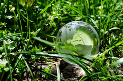 Grön jord Royaltyfri Bild
