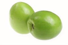 grön jujube Arkivfoton