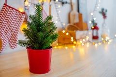 Grön julgran i en röd krukajulgarnering av bokehgirlanden nytt år 2019 för kök royaltyfria bilder
